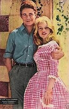 Tendencia Cuadros Vichy Brigitte Bardot.