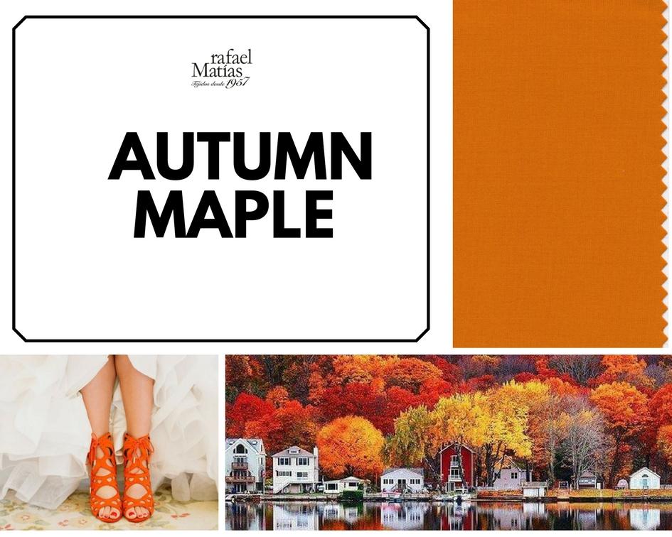 Autumn maple. Color Tendencia Otoño Invierno 2017 / 2018